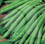 Beans Anupuma